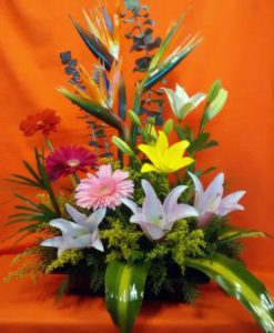 Primaveral Sin Rosas - Flores, Floreria, Floristeria