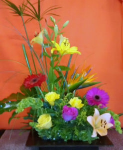 Primaveral - Flores, Floreria, Floristeria