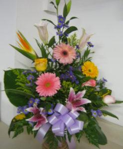 Rosas, Gerberas y Stargeizer - Flores, Floreria, Floristeria