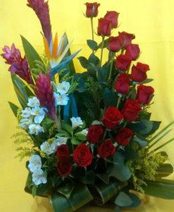 18 Rosas con Aves y Ginger - Flores, Florería, Floristería