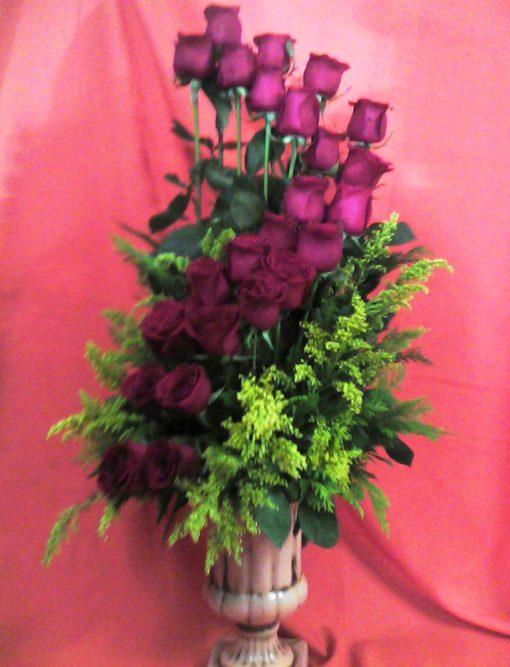 24 Rosas - Flores, Florería, Floristería