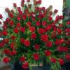 Arreglo con 100 Rosas - Flores, Florería, Floristería