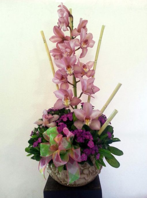 Orquídea Cambidium - Flores, Florería, Floristería