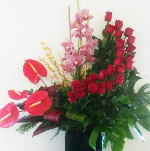 Exótico con Orquidea, Anturios y Rosas - Flores, Florería, Floristería