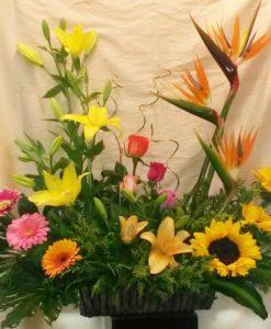 Primaveral Exótico - Flores, Florería, Floristería