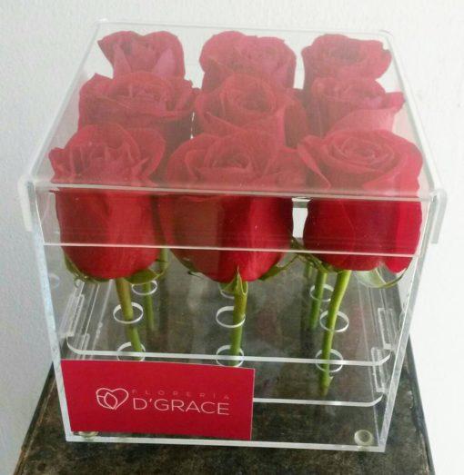 Caja Acrílica con 9 Rosas - Flores, Florería, Floristería