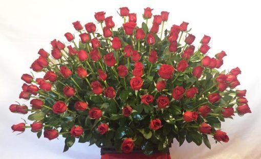Canasta de 100 Rosas - Flores, Florería, Floristería
