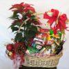 Canasta Navideña con Nochebuena - Flores, Florería, Floristería